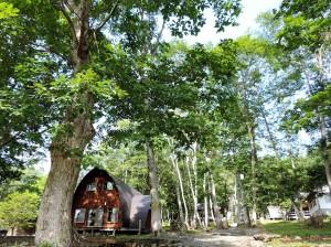 樹々の中1a30 DSCN0589